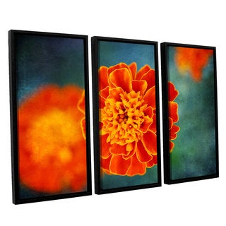ArtWall 'Dragos Dumitrascu's One in Orange' 3-piece Floater Framed Canvas Set
