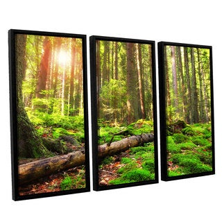 ArtWall 'Dragos Dumitrascu's Back to Green' 3-piece Floater Framed Canvas Set