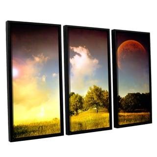 ArtWall Dragos Dumitrascu's Everlasting Season, 3 Piece Floater Framed Canvas Set
