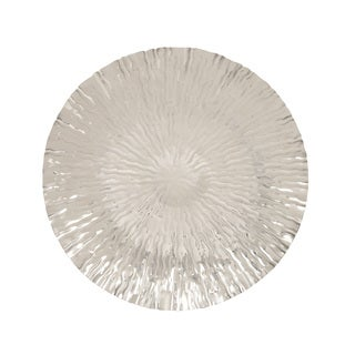 Stainless Steel Wall Platter 27-inch Deep Accent Piece
