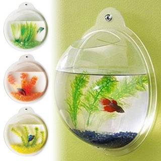 Deluxe Acrylic Wall Mounted Bubble Fish Tank