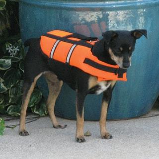 Poolmaster Doggie Swim Vest - X-Small