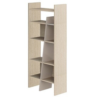 Display and Storage Shelf/ Cabinet