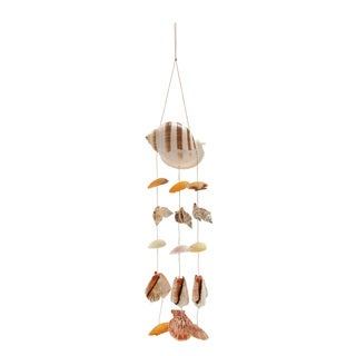Shell Wind Chime 5 inches wide x 22 inches high