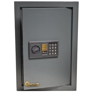 Magnum 0.585-cubic foot Wall Safe