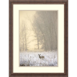 Jason Savage 'White-tailed Deer in Fog' Framed Art Print 21 x 27-inch
