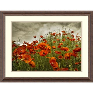 David Lorenz Winston 'Bobbi's Poppies' Framed Art Print 27 x 21-inch
