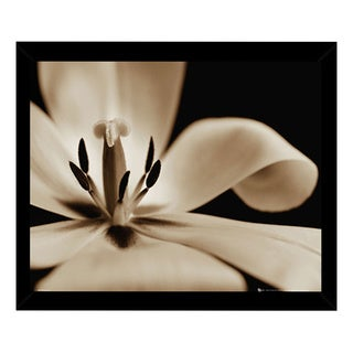 Flowers Tulip Print (16-inch x 20-inch) with Traditional Black Wood Frame