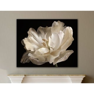ArtWall Cora Niele's White Tulip Gallery Wrapped Canvas