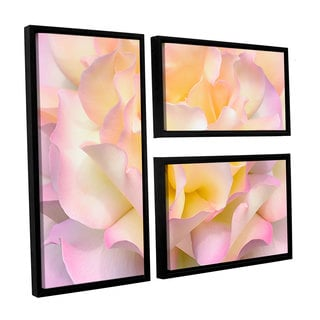 ArtWall Cora Niele's Pink Yellow Rose 3-piece Floater Framed Canvas Flag Set
