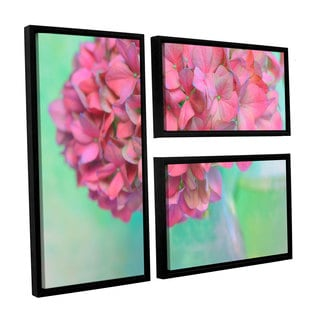 ArtWall Cora Niele's French Hydrangea Glass 3-piece Floater Framed Canvas Flag Set