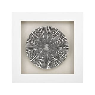 Dimond Home Mystere Shadow Box|https://ak1.ostkcdn.com/images/products/11452736/P18411316.jpg?impolicy=medium