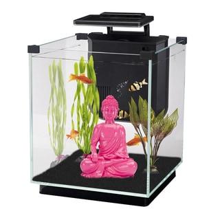 Penn Plax SIMPLICITY 5.5 gal Desktop Aquarium