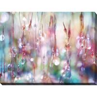 Sharon Johnstone 'Rainbow Rain Catcher' Giclee Print Canvas Wall Art