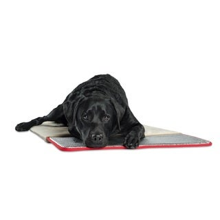 Pet Therapeutics TheraWarm Self-warming Cushion