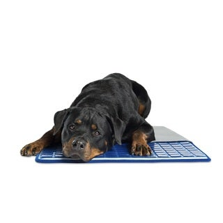 Pet Therapeutics TheraCool Gel Cell Cooling Pet Cushion