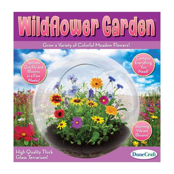 Glass Terrarium Wildflower Garden