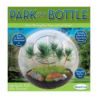 Glass Terrarium Park in a Bottle