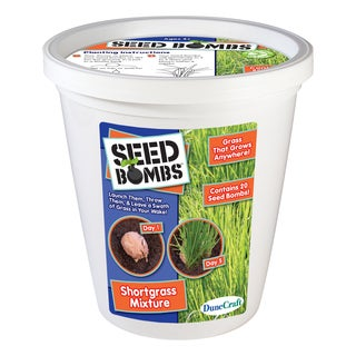 Seed Bomb Bucket Shortgrass Mixture