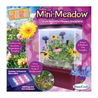 LED Light Cube Terrarium Mini-Meadow