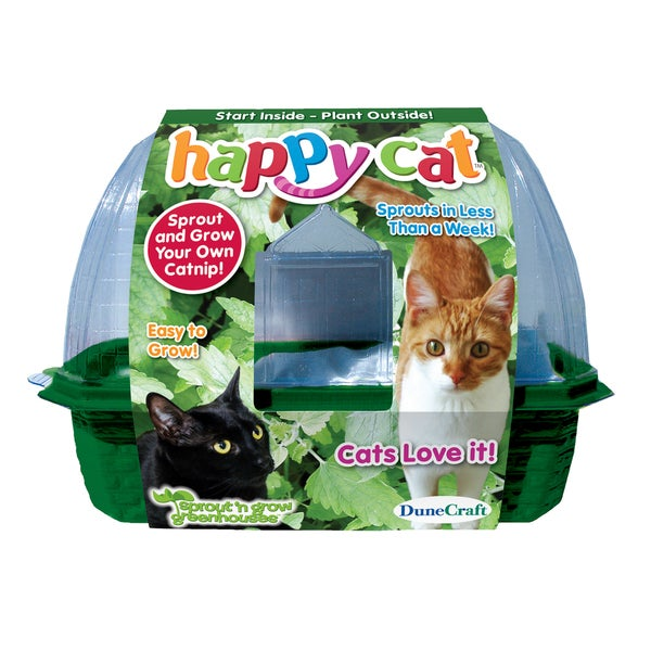 Happy Cat Plant Kit