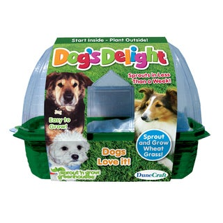 Dogs Delight Plant Kit