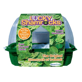 Sprout 'n Grow Greenhouse Lucky Shamrocks