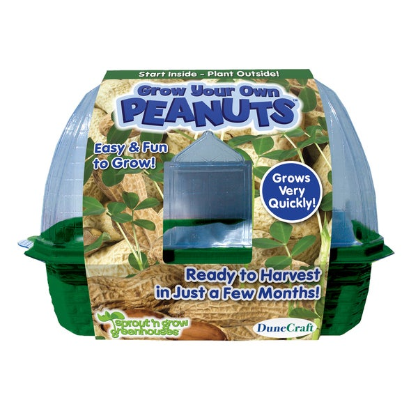 Grow Your Own Peanuts Plant Kit