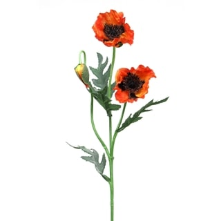Orange 26-inch 2-flower Poppy Stem (Pack of 6)