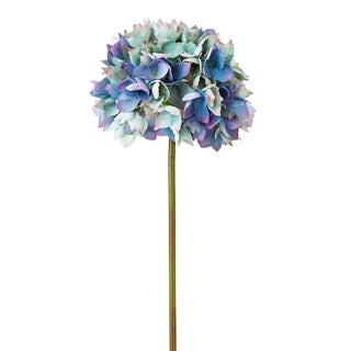 Blue/ Purple 20.5-inch Dry Hydrangea (Pack of 6)