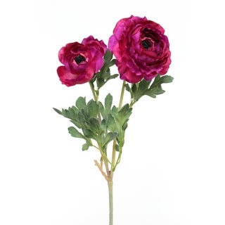 Pink 24-inch 2-flower Ranunculus Stem (Pack of 6)