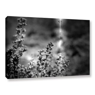 ArtWall Mark Ross's 'Conditions' Gallery Wrapped Canvas - Black