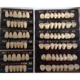 Polymer Resin Denture Teeth A2 Upper+Lower Dental 12 Sets (dt232a2)