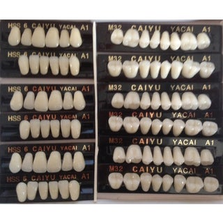 Polymer Resin Denture Teeth A1 Upper+Lower Dental 12 Sets (dt232a1)