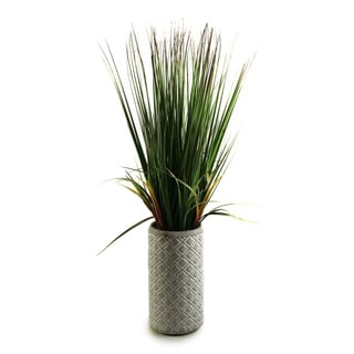 32-inch Onion Grass in Ceramic Planter