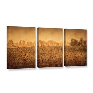 ArtWall Don Schwartz's 'Barn Among The Sunflowers' 3-piece Gallery Wrapped Canvas Set
