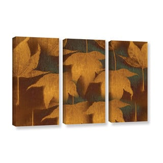 ArtWall Don Schwartz's 'Collection Of Leaves' 3-piece Gallery Wrapped Canvas Set