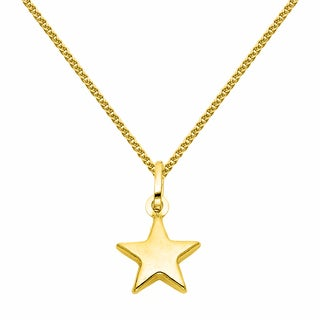 14k Yellow Gold Petite Star Pendant and Wheat Chain Necklace