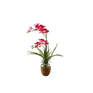 Pink/ White Orchids in Ceramic Planter