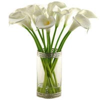 Calla Lilies in Glass Cylinder with Metal Rim