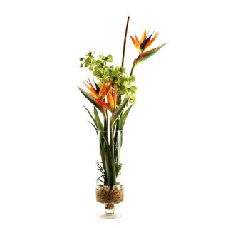 Natural Touch Bird of Paradise with Green Vanda Orchids in Glass Vase with Seagrass Netting