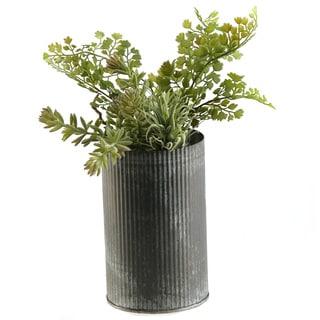 Sedum and Iron Fern in Zinc Vase