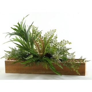 Mini Staghorn Fern and Mixed Foliage in Long Rectangle Planter