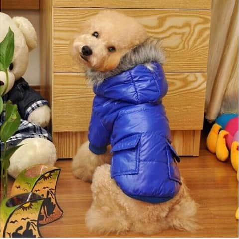 Doggie Winter Coat with Pockets