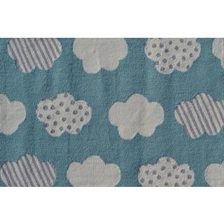 Hand-hooked Cloudy Day Aqua Blue Polyester Area Rug (2'8 x 4'8)