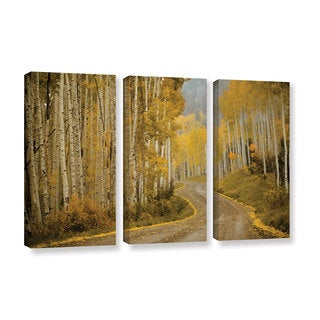 Amber Berninger's 'Telluride, CO, 3 Piece Gallery Wrapped Canvas Set
