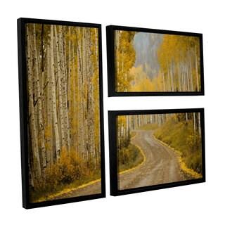 Amber Berninger's 'Telluride, CO, 3 Piece Floater Framed Canvas Flag Set