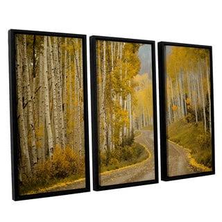 Amber Berninger's 'Telluride, CO, 3 Piece Floater Framed Canvas Set