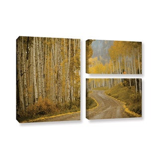 Amber Berninger's 'Telluride, CO, 3 Piece Gallery Wrapped Canvas Flag Set
