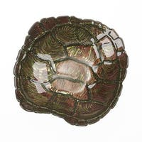 Turtle Shell Green Gold 9 Bowl